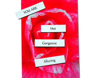 Valentines Day Gift, Dirty Word Magnets, Magnetic Love Note Kit, Sexy Gift for Him Her, Fun Playful Gift, Erotic Art Gift, gag gift, Sexy
