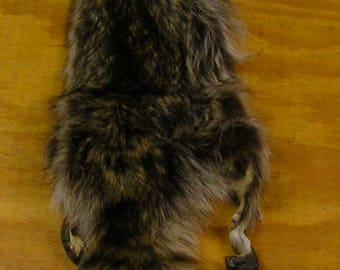 XXLarge Wyoming Raccoon Pelt for Life Size Mount