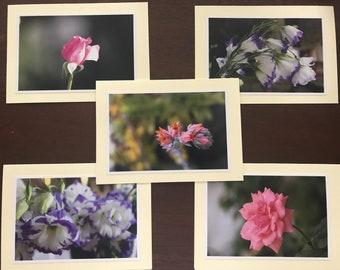 Photo Greeting Cards~Handmade (Set of 5)