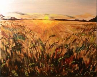Wheat Field in Sunset