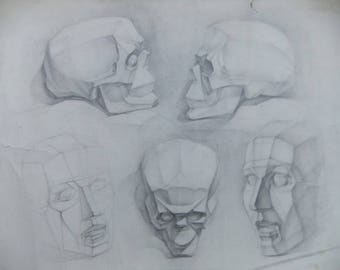 Original Skull Drawing Academical Anatomy  Vintage Pencil  Dark Tone Pictur Gift Human Skull Classical Sculpture