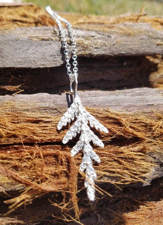 Western Redcedar and Hexagon Pendant in Recycled Sterling Silver with Chain