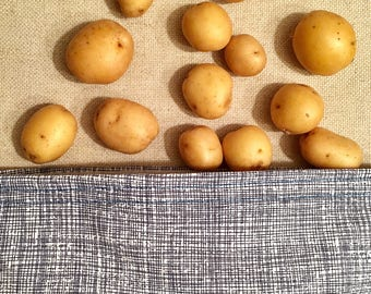 Original Collection Crosshatch - Reusable Bag - Sandwich Bag - Waterproof Bag - PUL Fabric - 100% Cotton