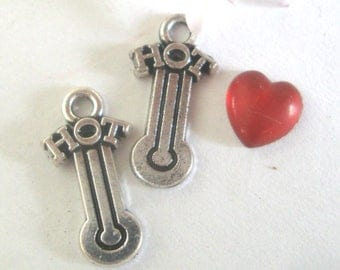 Hot Nurse Thermometer Charms