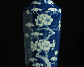 Antique Chinese Qing Dynasty Hawthorne/Prunus Blossom Porcelain Vase