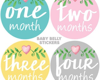 Baby Month Stickers, Monthly Baby Stickers, Bodysuit Stickers, Monthly Milestone Stickers, Baby Monthly Stickers, Baby Girl Photo Stickers