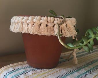 Sandstone Plant Wrap
