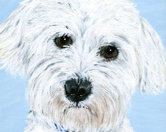 maltipoo maltese custom pet portrait yorkie poo gift for owner small dog poodle shih tzu pekingese commission pet art small cute dogs