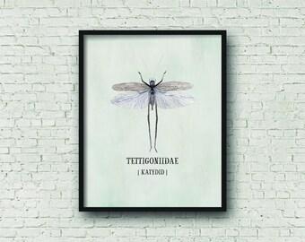 Katydid Digital Art, Watercolor Nursery Printable, Insect Nursery Art, Playroom Art, Kid's Bedroom Art, Bug Prints, Digital Art Print,
