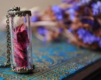 Blood red Elixir * bronze petals vial terrarium necklace pink