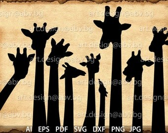 Vector  GIRAFFES, AI, eps, pdf, svg, dxf, png, jpg Download, Digital image, graphical, discount coupons