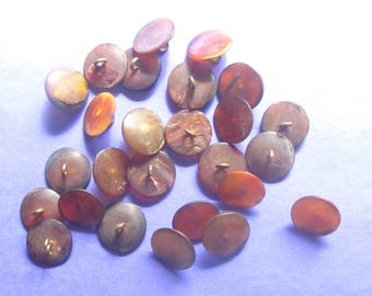 Set of 26 Orange Colored Natural Horn Buttons With Metal Shanks