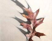 Leaf Print, Leaf Decor, B...