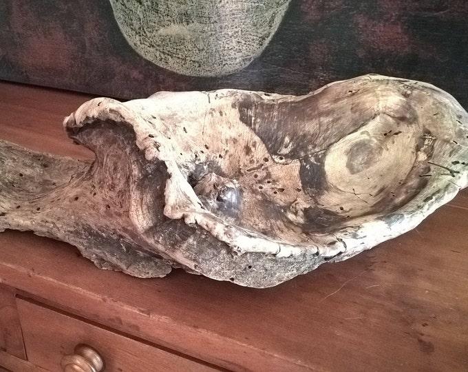 Natural Bowl Shaped Driftwood Knot. Rustic Home Decor Art Sculpture 989