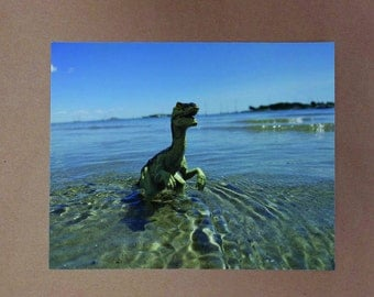 Dinosaur Raptor Photo Print, Beach Vacation