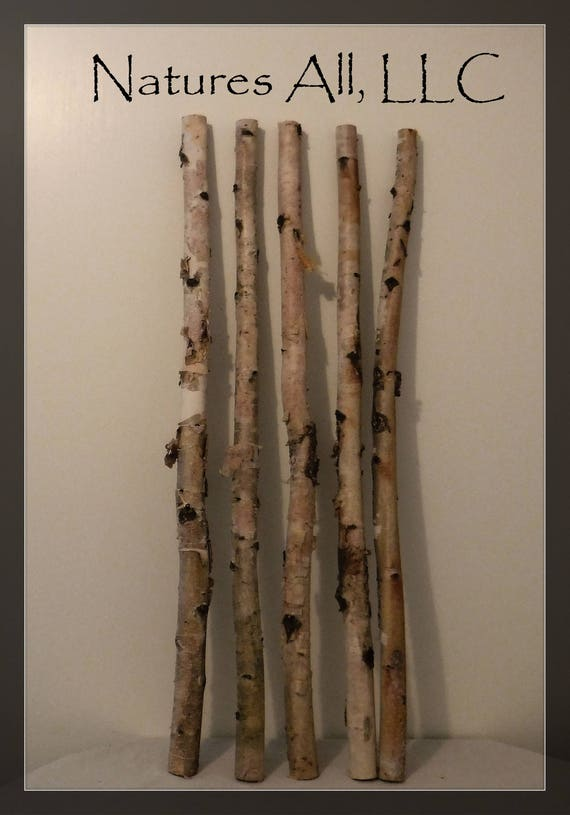 Decorative White Birch/White Birch Sticks 5 PC/3 Ft. Lengths/White Birch Pole/Rustic Wedding And Home Decor/Shipping Included: Item# WB-3601