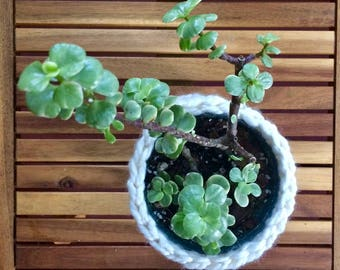 Crochet Plant Basket Tutorial Download for Beginners | Crochet Pattern Download Planter Basket Bowl | Boho Decor | Jungalow Style Planter