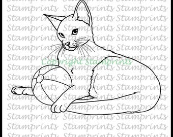 Abyssinian Cat with Ball (TLS-1723) Digital Stamp. Cardmaking.Scrapbooking.MixedMedia.