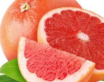 grapefruit ruby red essential oil organic pure therapeutic ruby red grapefruit essential oil