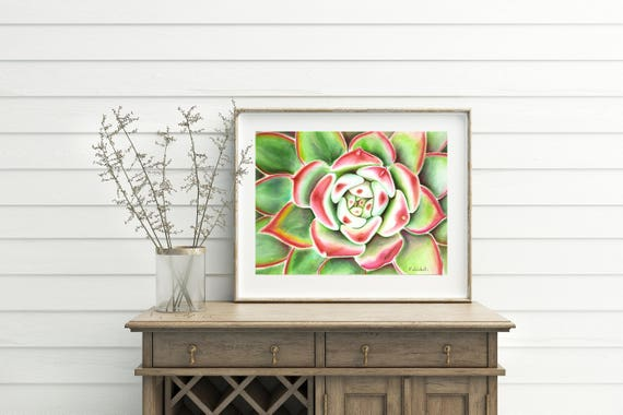 Succulent,watercolor,plant,original,ooak,31x23 cm./12x9 inc.,gift idea, wall art, home decoration, lounge,kitchen,living.