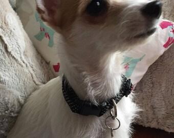 Boy dog collar black spotty dog collar trendy dog collar black elegant dog collar dotty lightweight dog collar new puppy collar black