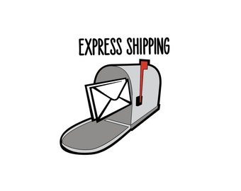 Express Shipping to the United States