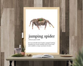 Jumping Spider Definition print, animal dictionary, entomology gift, framed insect, definition poster, phidippus, funny bathroom art