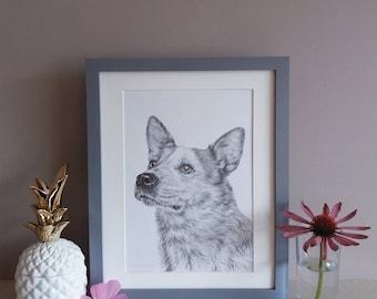 Custom pet portrait   Hand Drawn Pet Portrait   Pet drawing   Pet portrait   Pet picture   Animal portrait   Personalised Portraits