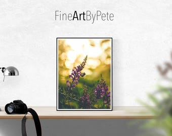 Honey Bee Print, Bee Wall Art & Home Decor, Honey Bee Poster, Gift for Bee Keeper, Gift for Gardener, Pollination, Insect Prints