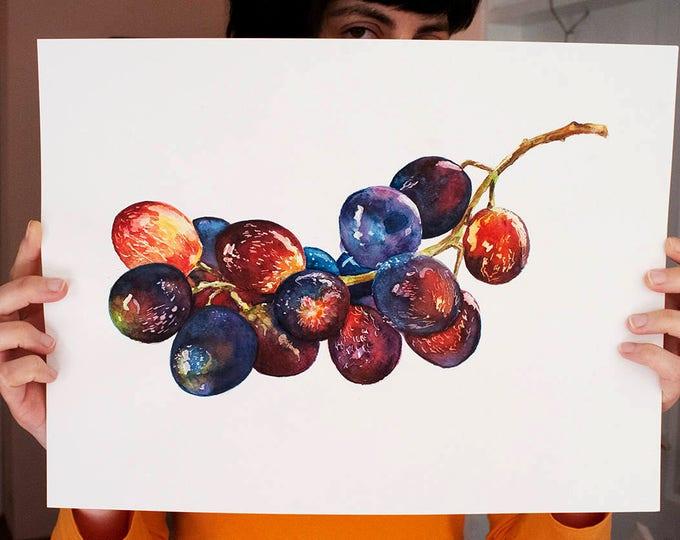 Bunch of Grapes ORIGINAL Watercolor Painting, Grapevine Fruit Artwork