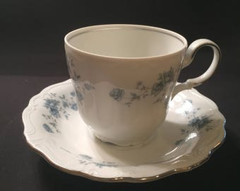 Blue Garland cup and saucer by Johann Haviland Bavaria Germany