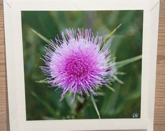 Purple pink flower head greetings card blank for your own message