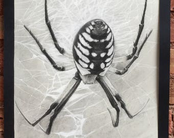 Writing Spider