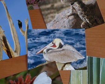 Postcard set: HOT (AZ, CA images)