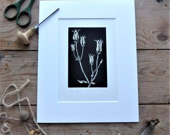 Aquilegia Seedheads. Limited edition linoprint with mount. Black and white design.