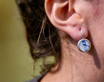 Earring with Hook