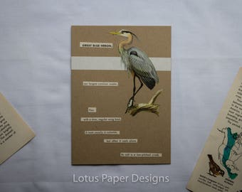 Handmade Blank Greeting Card (Folded A6) - Great Blue Heron - Golden Guide to BIRDS