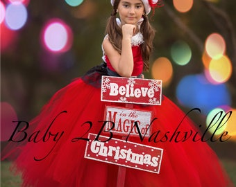 Red Santa Dress Red Christmas Dress Flower Girl Dress Red Dress Tulle Dress Wedding Dress Red Birthday Dress Red Toddler Dress Red Dress