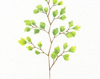 ORIGINAL Maidenhair Fern No. 2 - Watercolor Painting