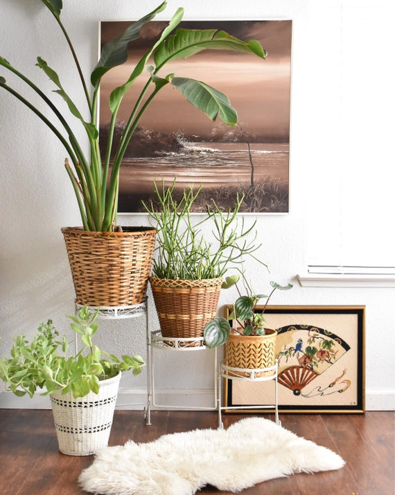 RESERVED | metal 3 tiered plant stand