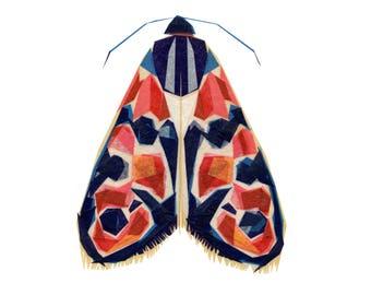Flora Burnet Moth - Moth Art Print, Moth Decor, Insect Art Print