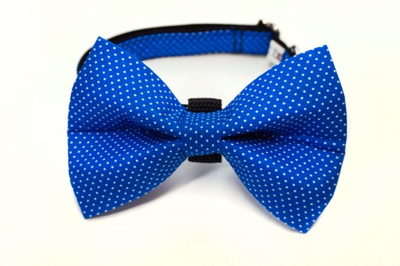 Blue Polka Dot Bow Tie and Collar