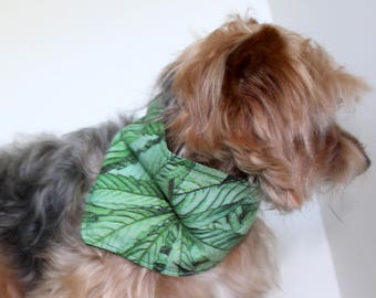 Cannabis Dog Bandana, Small and Medium  tie-on bandanas for dogs, Marijuana Green color reversible, In Stock, Fashion Dog Clothes