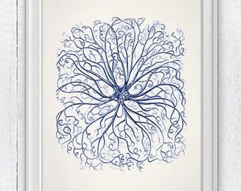 Blue Euryale Starfish - sea life print - Antique sealife Illustration - Beach house wall decor, Sea life illustration in blue, SPA304