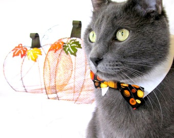 Fall Polka Dot Bow Tie, Necktie, or Bow on a Shirt Style Collar for both Dogs & Cats