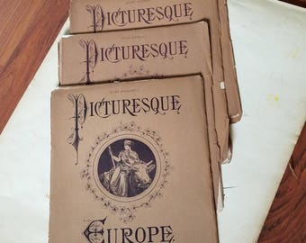 Antique Picturesque Books  Europe D. Appleton & Co. N.Y. 1876 4 Parts 14 - 17 Ireland, Castles and Cathedrals