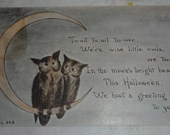 Cresent Moon With Two Hooting Owls Antique F.A. Owen Halloween Postcard