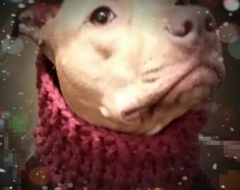 Crochet Dog Cowl