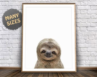 Sloth Art • Sloth Print Jungle Animals Print Smiling Animals Poster Sloth Poster Sloth Pictures Jungle Wall Art Sloth Decor Jungle Nursery