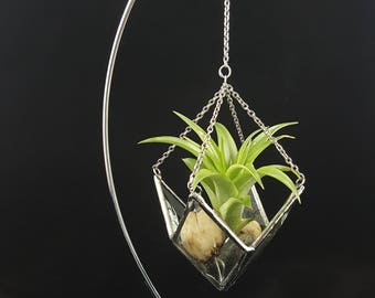 Beveled Stained Glass Air Plant Holder